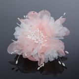 Accrocheur Tulle Fleurs et plumes (042052129)