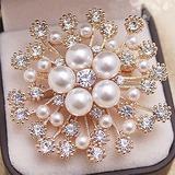 Hottest Alloy/Rhinestones/Imitation Pearls With Rhinestone Ladies' Brooch (011201111)